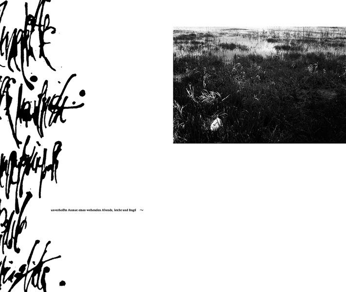 https://www.sarahhartwig.com/files/gimgs/th-53_53_calligraphysarah-hartwig-fliessen-bewegung-und-stille-kopie2.jpg