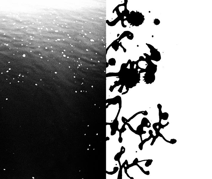 https://www.sarahhartwig.com/files/gimgs/th-53_53_calligraphysarah-hartwig-fliessen-bewegung-und-stille-kopie4.jpg
