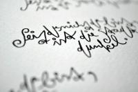 https://www.sarahhartwig.com/files/gimgs/th-62_62_wintergartencalligraphybysarahhartwig2jpg.jpg